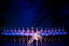 """IV Международный фестиваль (""""Тошкент бахори 2017"""") завершается сегодня балетом """"Лебединое озеро"""" с участием ведущих солистов Пермского театра оперы и балета"""